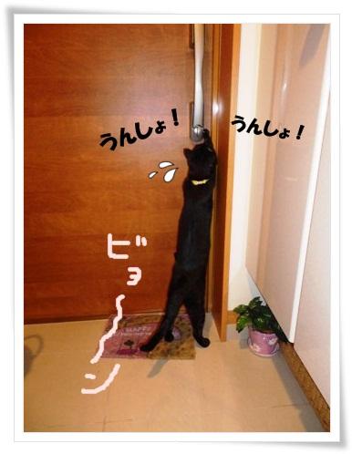 ドア開けの術