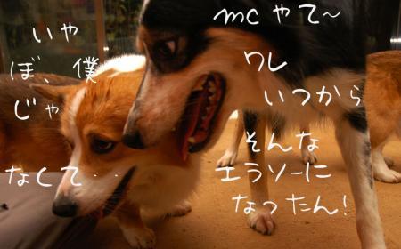 091202blog1.jpg
