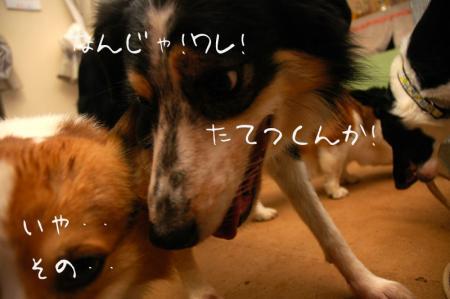 091202blog2.jpg