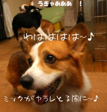 091204blog3.jpg