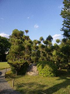 kyoto_nijo14.jpg