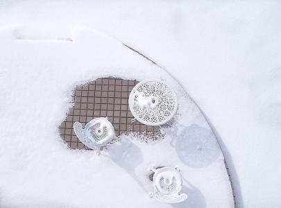 自宅の雪庭