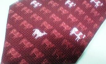 牛とヤギ②
