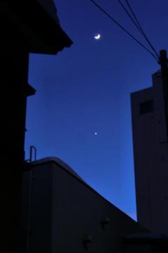 20120128-02.jpg