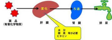 20120217-01.jpg