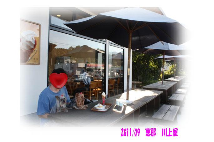 IMG_7104a.jpg