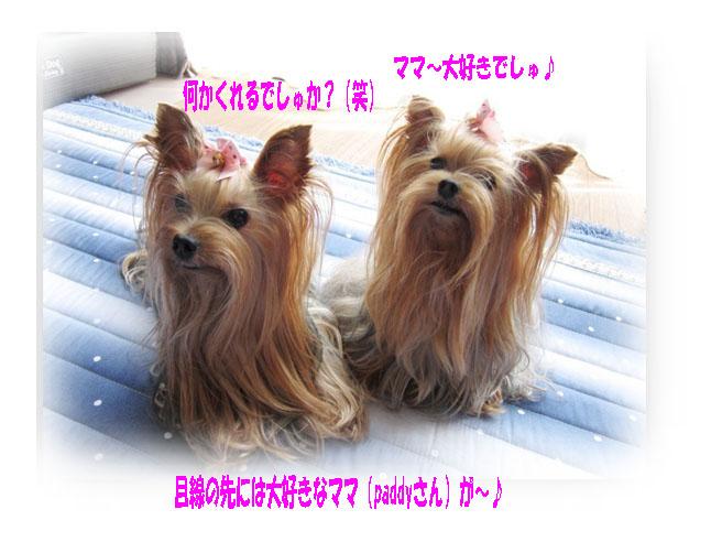 IMG_7518.jpg