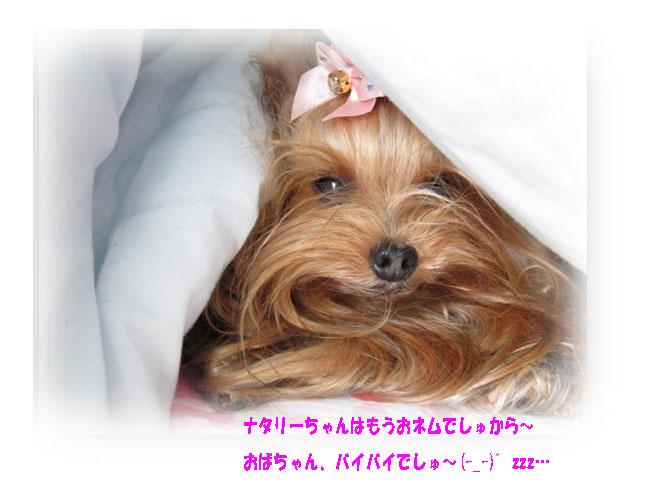 IMG_7540.jpg