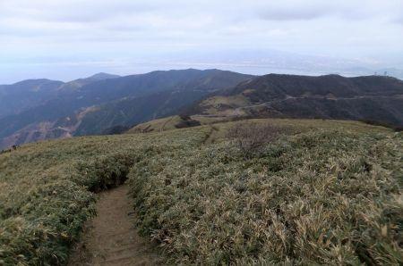 達磨山からの下り