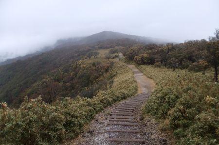 小達磨山の下り