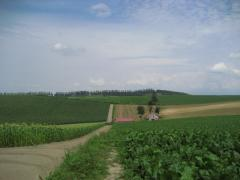 2009kita6-4.jpg