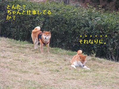 s-IMG_6982.jpg