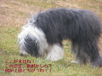 s-IMG_6990.jpg