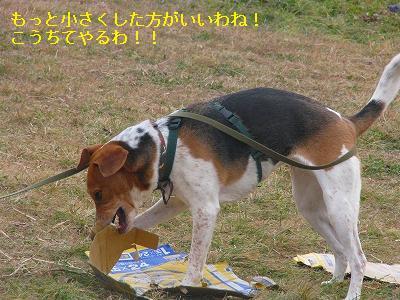 s-IMG_6995.jpg