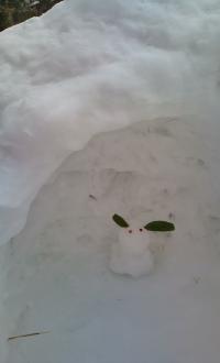 かまくら 雪うさぎ
