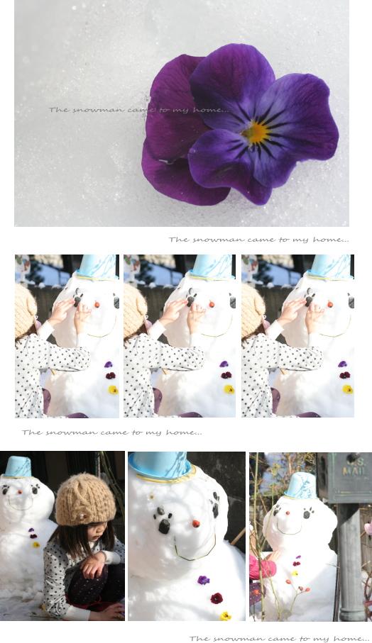 snowman-310.jpg