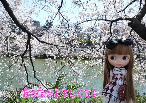 10_20120412162640.jpg