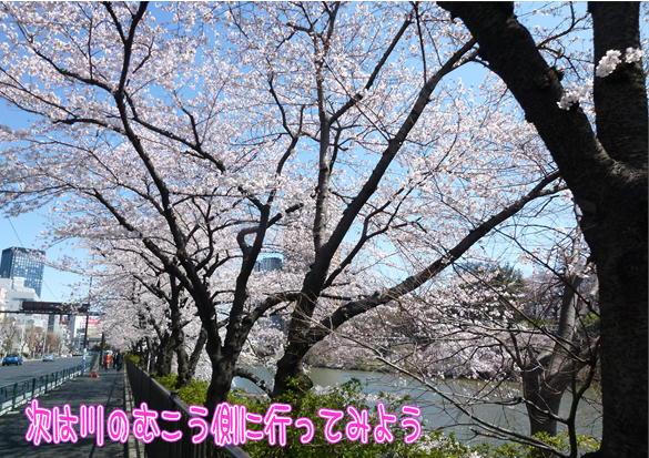 13_20120412162839.jpg