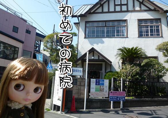 f8_20120316150037.jpg