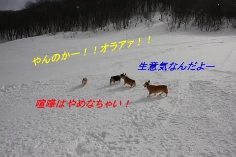 resize11569.jpg