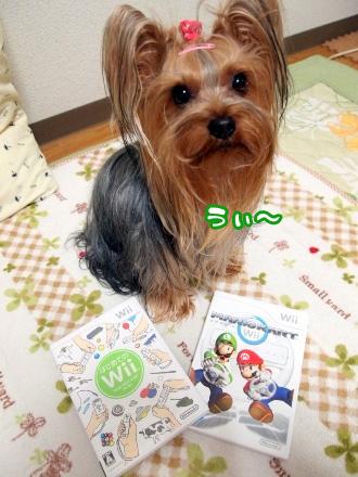 1_20100124192612.jpg