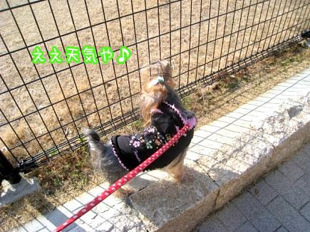 生田川公園ですよ。