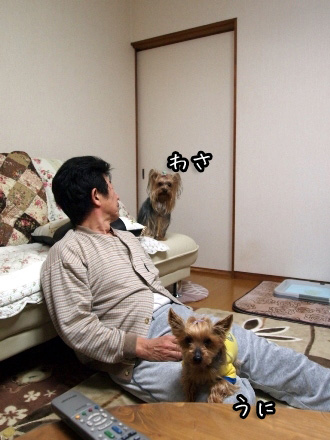 2_20091230201035.jpg