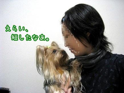 3_20091223183406.jpg