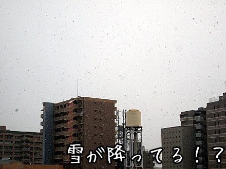 3_20100113141400.jpg