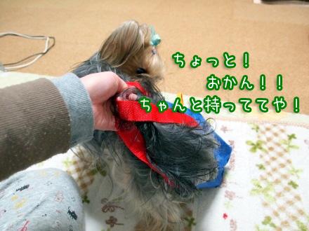 4_20100115192544.jpg