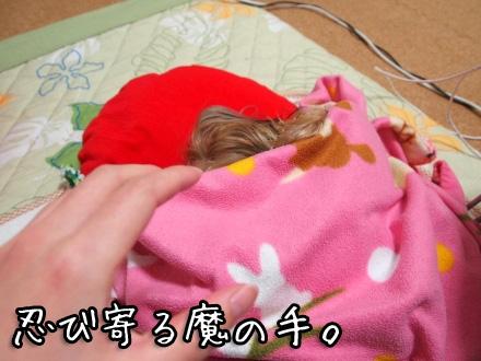 6_20100120194300.jpg