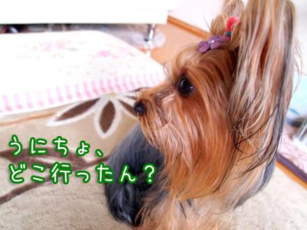 7_20100107172214.jpg