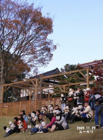 DPP_syugo2.jpg