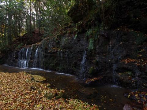 落ち葉の中の千條の滝