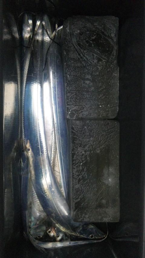DVC00144.jpg