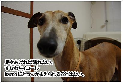 20130222_10.jpg