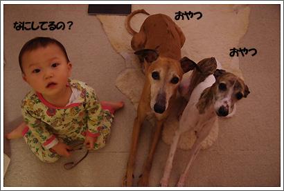 20130303_13.jpg