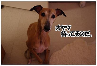 20130303_9.jpg