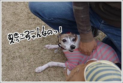 20130320_16.jpg
