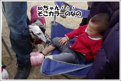 20130320_26.jpg