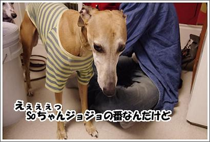 20130320_38.jpg