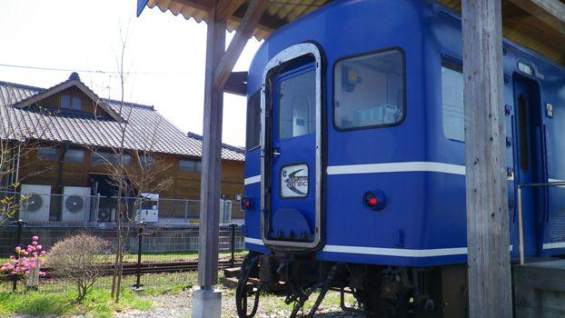 IMGP0731.jpg