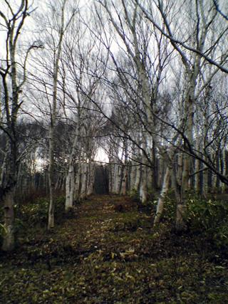 20091207-1.jpg