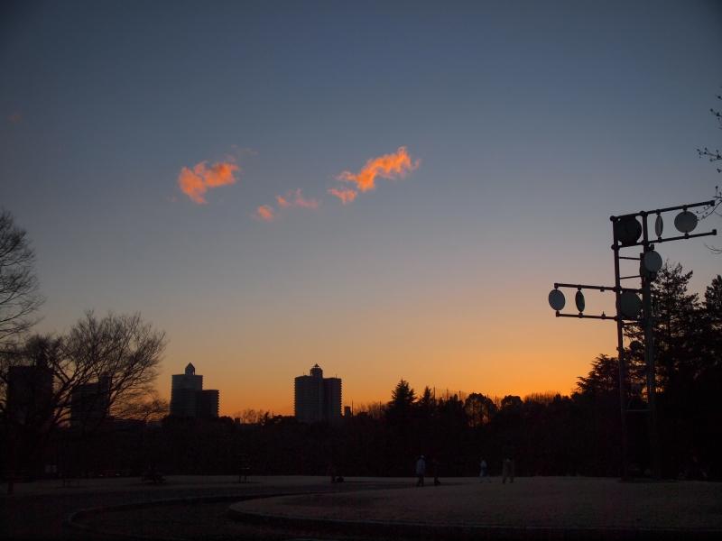 お散歩(20130128)