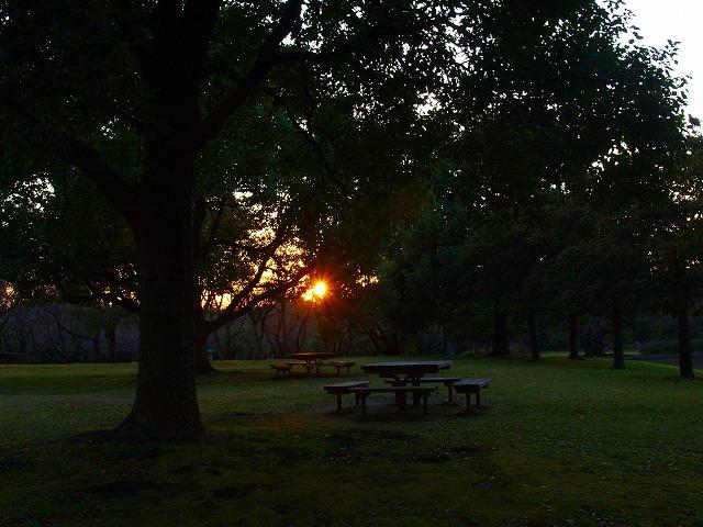 s-iyppPB158157夕日の公園
