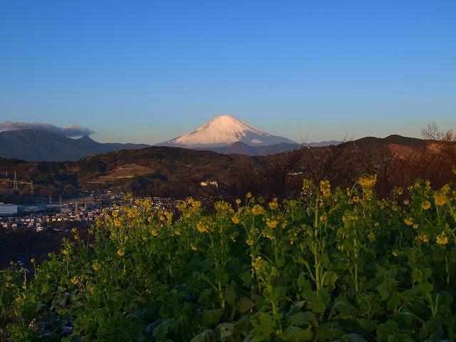 s-iypp正月の富士