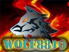 wolf8810