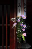 004_20110112173452.jpg