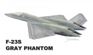 gray phantom