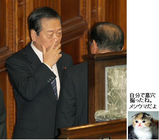 20091117OZAWA1.jpg
